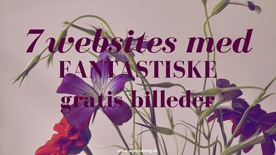 gratis billeder - blog
