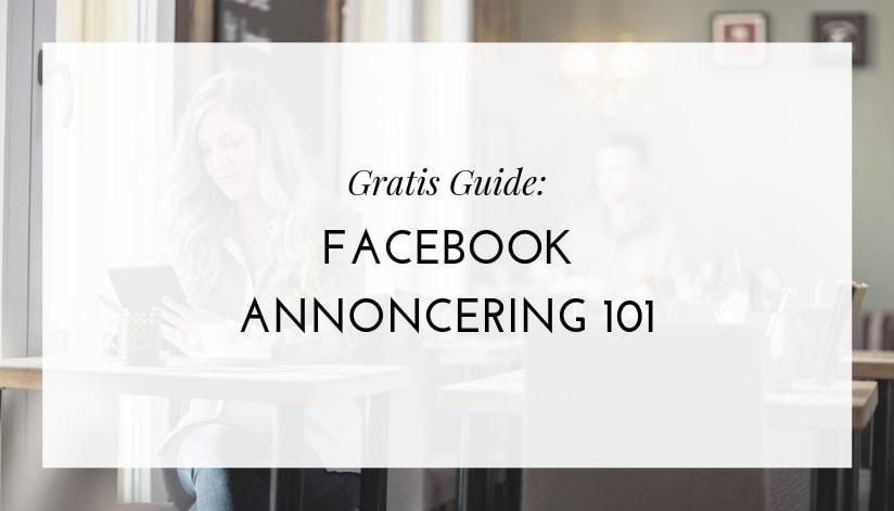 Gratis guide til Facebook annoncering